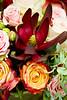 11 14 15 Flowers-0072