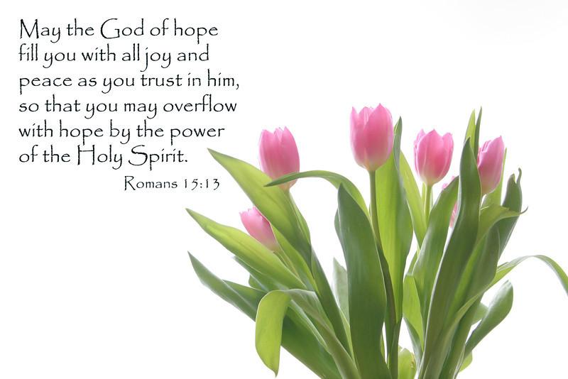 03 07 08 Faith's 3rd Birthday (44) Romans