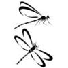 dragonfly 07