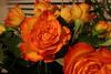 03 08 06 Faith's Birthday Flowers jpg (15)
