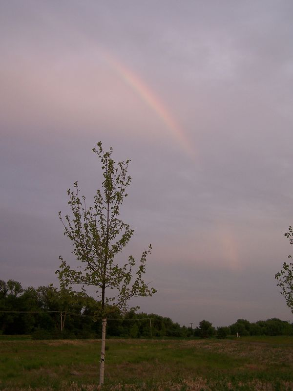 Rainbow 06 12 05 (10)