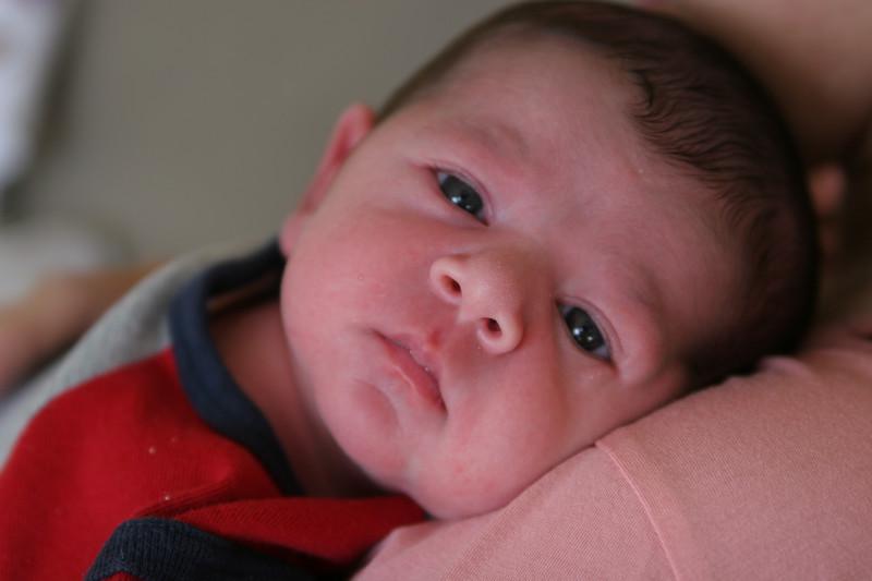 10 06 07 Zachary Stewart (3)