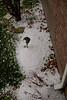 03 25 09 Hail Storm-0214