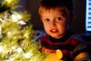 12 12 09 Jonah's Christmas Tree-9521