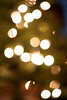 12 12 09 Jonah's Christmas Tree-9537
