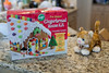 12 22 08 Gingerbread House-8948