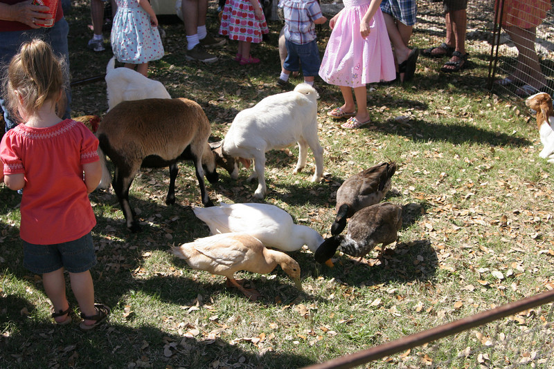 03 15 08 Easter Egg Hunt (1)