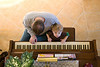 11 16 08 Jonah & Dada on piano-5662