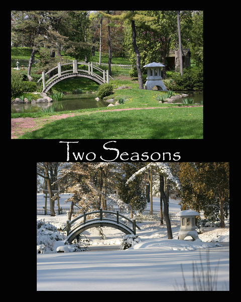 Japanese Garden - Two Seasons