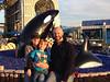 12 24 12 SeaWorld