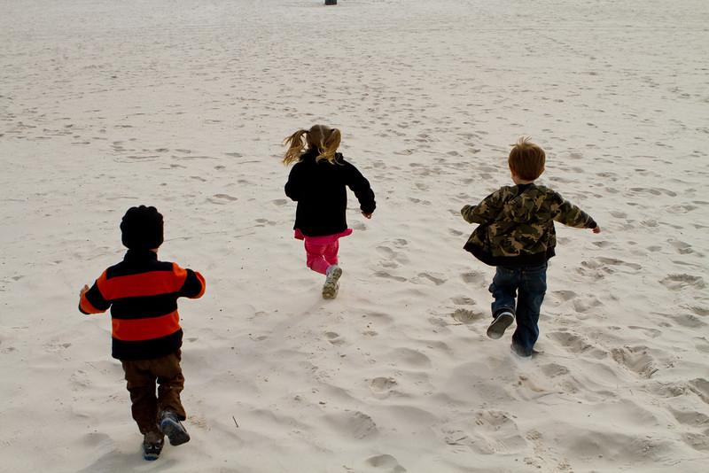 12 28 11 Gulf Shores Beach-1