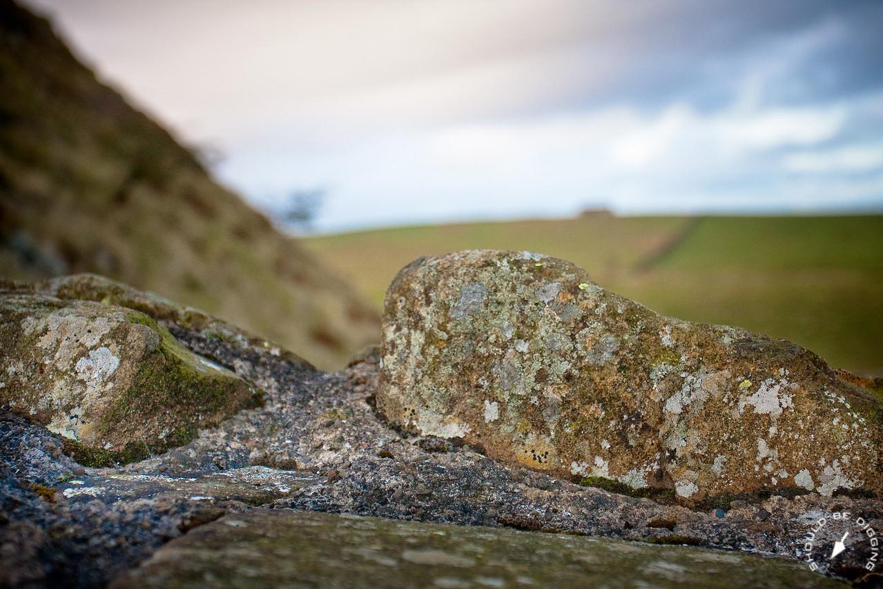 Hadrian's Wall looking North