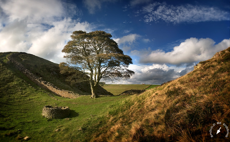 Sycamore Gap, Hadrian's Wall, North England