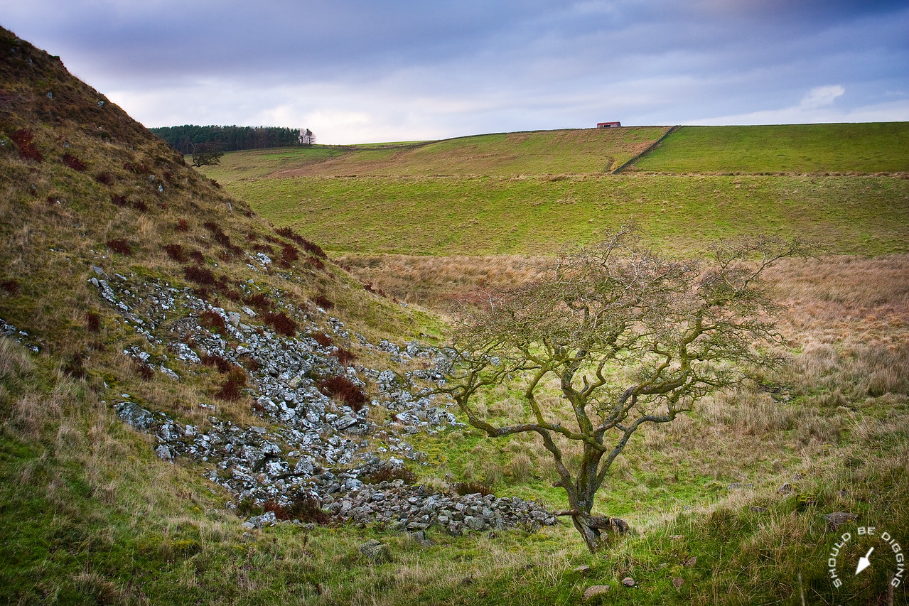 Hadrian's Wall at Sycamore Gap, View North