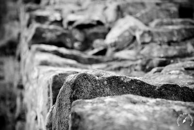 Hadrian's Wall Detail, Lichen