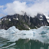 LeConte glacier