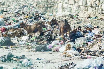 Haiti_2016_WEDS-12