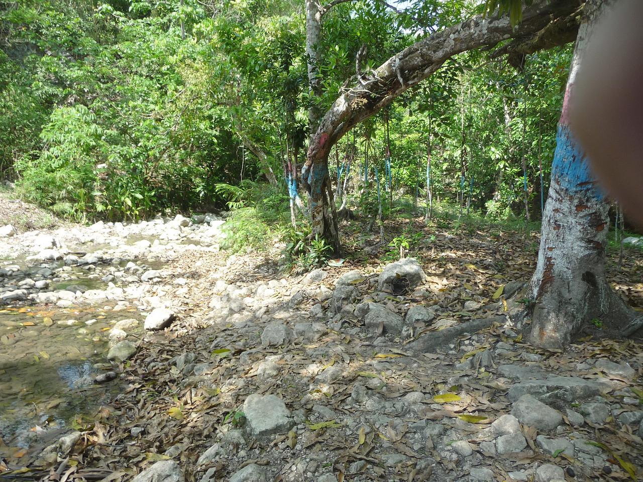 P1010945. Scenery around the well.