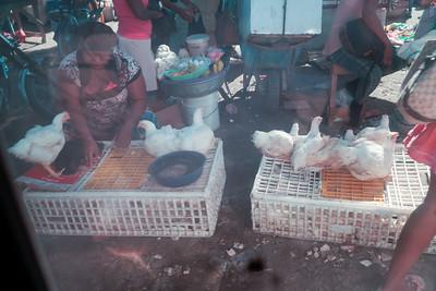 Haiti_Day_3-0022