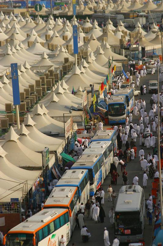 Buses unloading pilgrims.