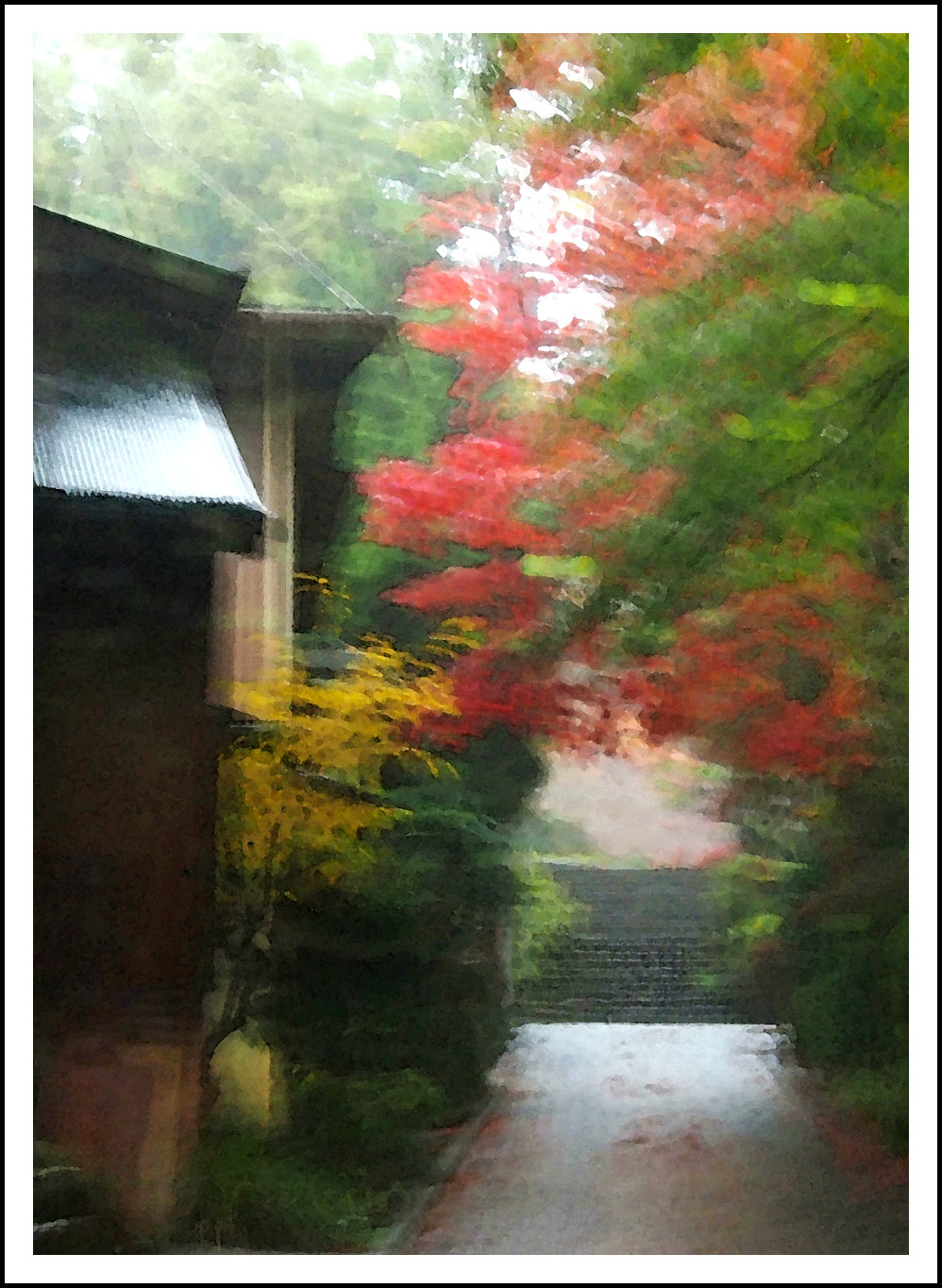 colors in the rain