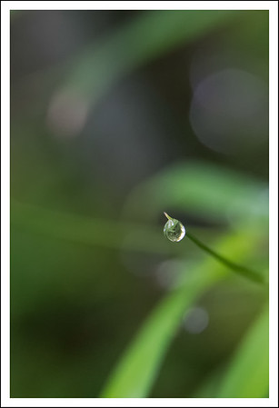 One more water drop.