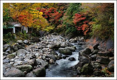 The Hayakawa river