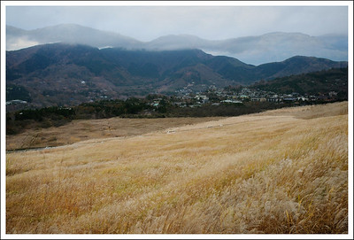 This year we were able to hike up to the tree line and enjoy the view looking across the valley.
