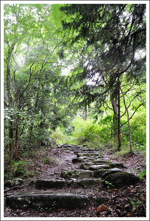 The path going up from Chisuji waterfall