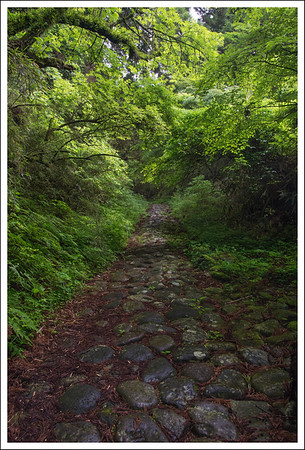 Part of the old Tokaido road between Edo and Kyoto