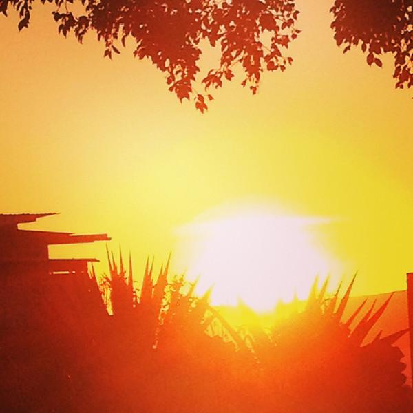 tasha 1/15/13 sunset love