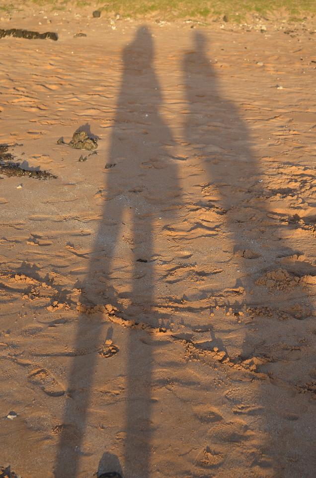 junko 2/10/13 sunset shadows