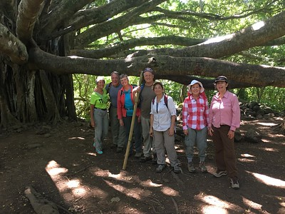 Wilderness Volunteers: 2017 Haleakala National Park (Hawaii) Service Trip