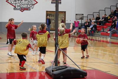LHS girls basketball game 1-21-14