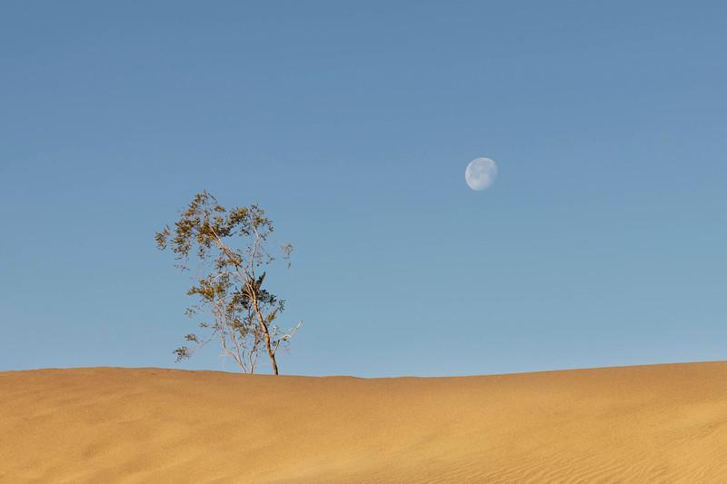 Moonset, Mesquite Flats Sand Dnes.