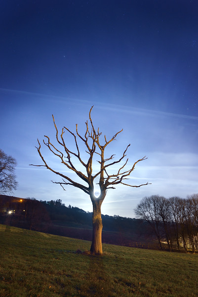 Supermoon and Skeleton tree