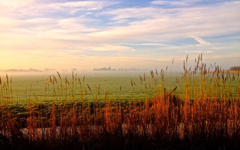 Fotograaf: Fred van der Kloor. 'tWoudt bij Schipluiden Zuid Holland