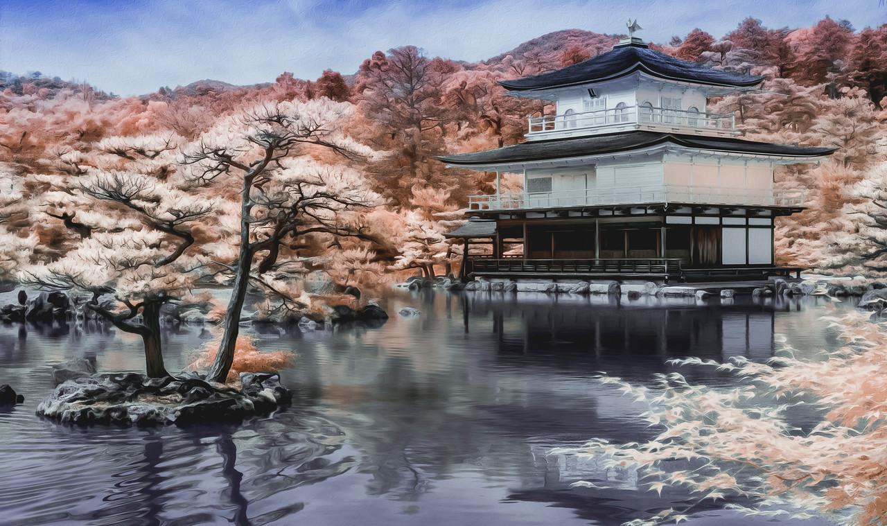 Adam Hanson - Kinkakuji Temple