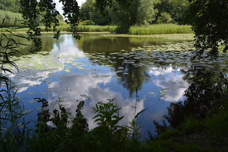 Fotograaf: Bert Bosch. water en wolken in de Biesbosch