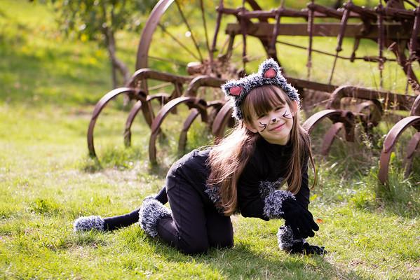 cat-costume-3585