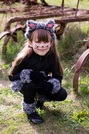 cat-costume-3583