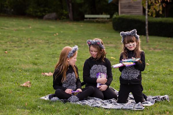 cat-costume-3794