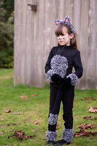 cat-costume-3622