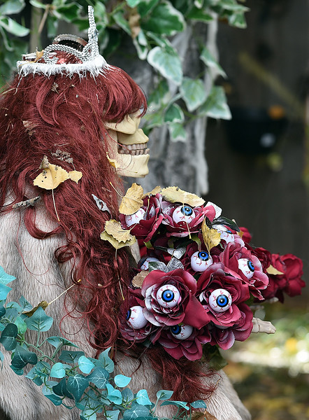 A skeleton holds a bouquet of eyeballs Wednesday, Oct. 11, 2017, at Creepy Walk in the Woods, 1750 Savage Rd, in Loveland. (Photo by Jenny Sparks/Loveland Reporter-Herald)