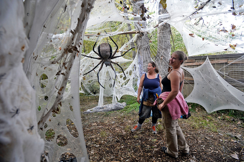 Owner Kitty Wild, left, and actor Angela Helburg, right, stand in the spider tunnel Wednesday, Oct. 11, 2017, at Creepy Walk in the Woods, 1750 Savage Rd, in Loveland. 9Photo by Jenny Sparks/Loveland Reporter-Herald)