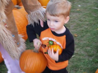 2005 Pumpkin Patch 2005