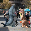 Main Street in Fitchburg was closed down on Saturday for the annual Halloween on Main Street event. during the event a T-Rex was seen hanging out with a very big shark. SENTINEL & ENTERPRISE/JOHN LOVE
