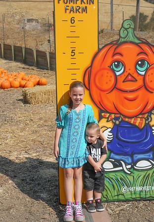 Pumpkin Farm - 2017 - Denai 7 - Kash 2