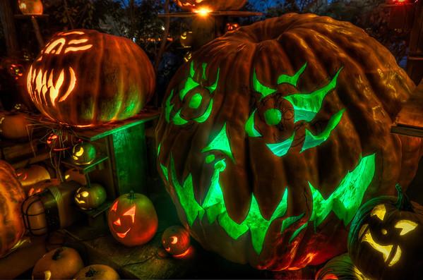 2011 Roger Williams Zoo Jack-O-Lantern Spectacular