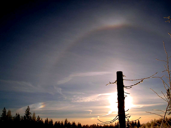 22° halo, upper tangent arc, sundog, and sunpillar.